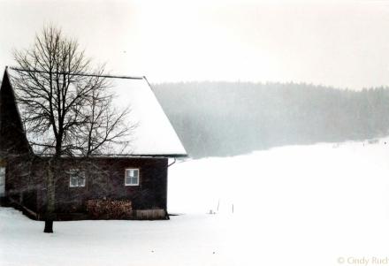 schwarzwaldhütte