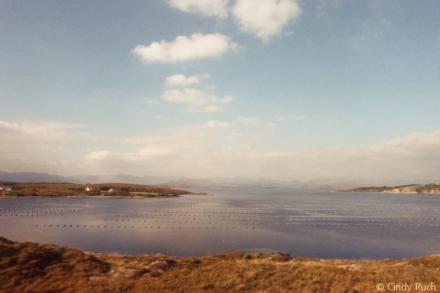 Ireland 08