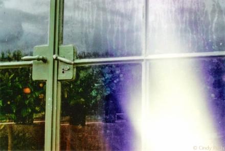 barockgarten: ein lichtfleck