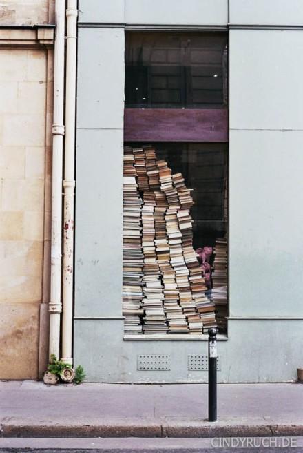 Buchfenster