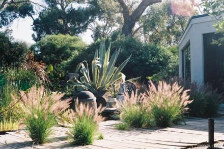 helen's garden I