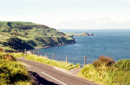 torr head scenic route2