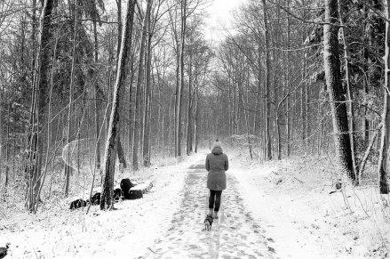 cindyruch_schneespaziergang ii_sml
